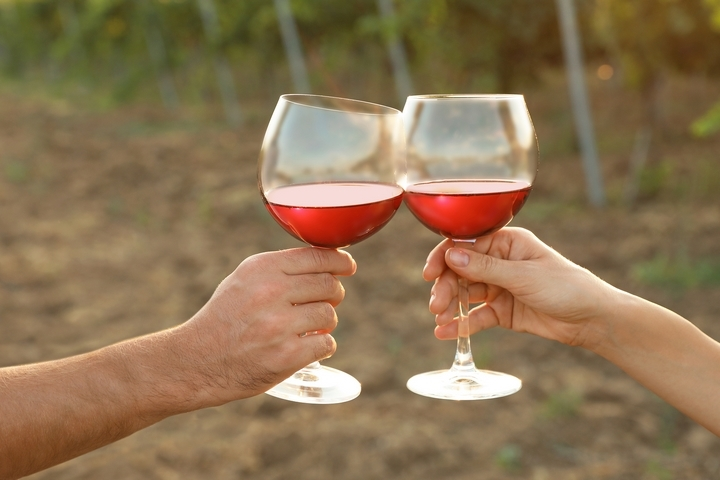 5 Healthiest Red Wine Choices Good for Your Body